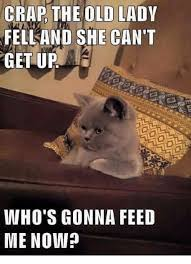 Grumpy Old Lady Meme - crap the old lady fell and she can t get up who s gonna feed me