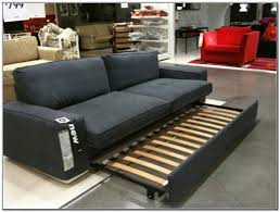 Sofa That Turns Into Bunk Beds by Bed Ideas Beautiful Pull Out Double Sofa Bed For Your Red Sofa