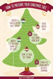 how to keep your christmas tree fresh and fragrant through the