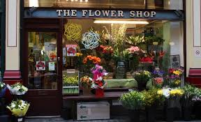 floral shops flower shops plotnick photography