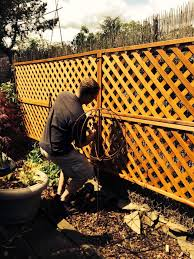 Cheap Fences For Backyard 10 Cheap But Creative Ideas For Your Garden 2 Lattice Fence