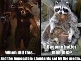 Raccoon Excellent Meme - it s raccoon time i can has cheezburger