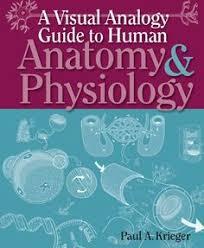 Human Anatomy And Physiology By Elaine Marieb Pdf Digestive System With Liver U0026 Pancreas 360 Degree Rotation