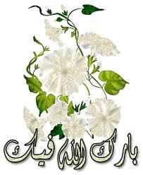 صور مرقد الإمام الرضا (ع)