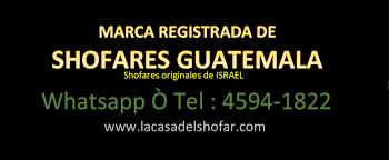 shofares de israel venta de shofares en guatemala home