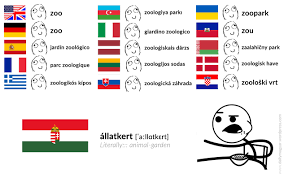 Language Meme - 罍llatkert a l 髑tk髮rt literally animal garden https