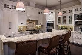 High End Kitchen Cabinets Brands Kitchen High End Kitchen Cabinet Finishes Luxury Kitchen Cabinet