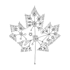canadian maple leaf colouring abstract drawing mind