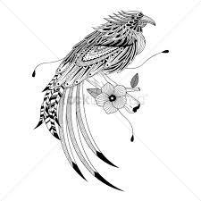free hawk stock vectors stockunlimited