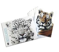 world wildlife fund species note cards wwf gift center happy