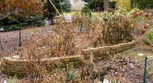 preparing the vegetable garden for winter