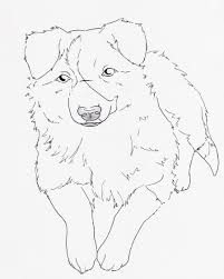 border collie coloring pages funycoloring