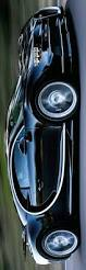 bugatti chiron engine best 25 bugatti chiron speed ideas on pinterest bugatti motor