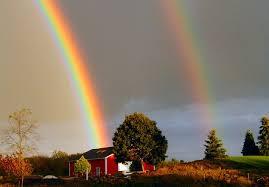 rainbows and myths rainbow veins