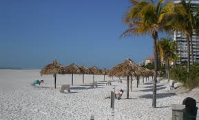 places to stay in florida search u0026 find florida accommodations