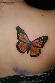 monarch butterfly on back shoulder photos pictures and