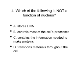unit 5 slideshow quiz write down your answers and see how many you
