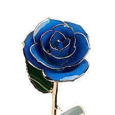 Rose Dipped In Gold Blue Rose 24k Gold Edge 12