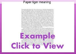 paper tiger meaning paper academic writing service