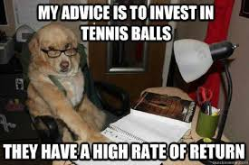 Animal Advice Meme - best of the financial advice dog meme 14 pics pleated jeans