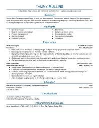 job resume web developer resume samples free web developer resume