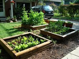 how to plan vegetable garden how to plan your new vegetable garden dgf landscapes mackay