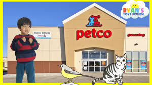 family fun trip to petco animals for kids children and toddlers