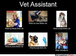 Vet Tech Memes - vet assistant what people think i do what i really do