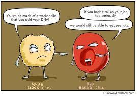 Biology Memes - frick yeah biology memes