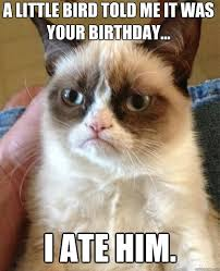 Day After Birthday Meme - funny birthday meme a little bird told me it was your birthday image