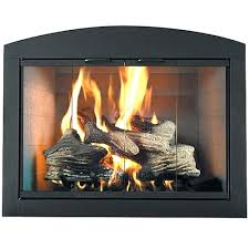 fireplace glass doors home depot canada with blower purpose free