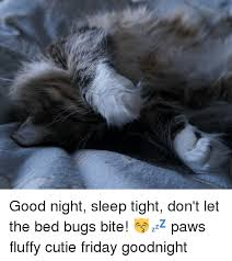 Dont Let The Bed Bugs Bite 25 Best Memes About Sleep Tight Dont Let The Bed Bugs Bite