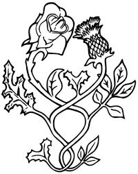 love weeding rose thistle painting u0026 drawing ideas art