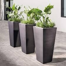 Front Door Planters by 35 Best Terrace Plants Images On Pinterest Gardening Outdoor