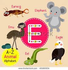 cute children zoo alphabet e letter stock vector 491883034