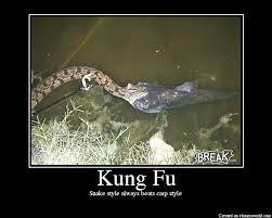 Meme Kung Fu - kung fu picture ebaum s world