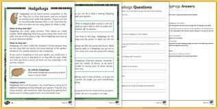 comprehension worksheets animal comprehension packs page 1