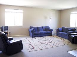 Carpet Ideas For Living Room Rugs On Carpet Living Room Area Rug Ideas