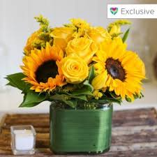 Flower Delivery Boston Flower Delivery And Florists In Boston Bloomnation