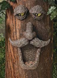 tree face amazon com fun express 1452 bird feeder wild bird feeders