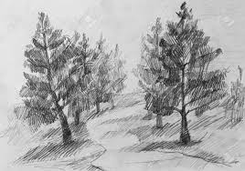 pencil for painting forest pencil painting for your design stock photo picture and