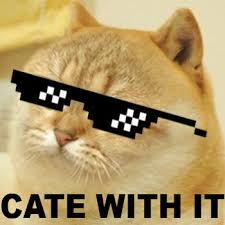 Cate Meme - cate with it doge know your meme