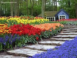 beautiful flower garden pictures home design