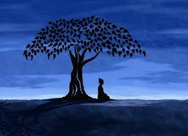 buddha the bodhi tree i this image so much age y