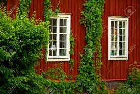 red wooden house with climbing plants and windows stock photo
