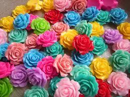 colorful roses rosa karuchan