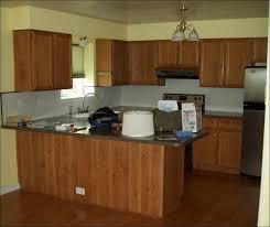 Kitchen  Cabinet Painting Ideas Refinishing Oak Kitchen Cabinets - Painting my kitchen cabinets