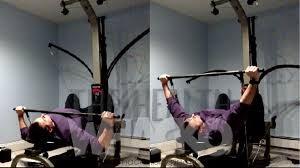 the health whacko exercise directory home gym the chest