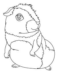 adorable ginny pig coloring pages animal coloring pages of
