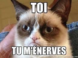 Grumpy Cat Meme Generator - angry cat meme via meme generator angry grumpy cat pinterest